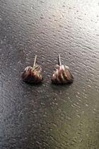 Mini boucles d'oreilles triangle détaillé